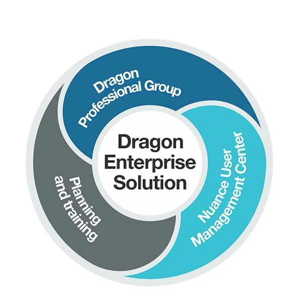 ● Dragon 15 Professional Group